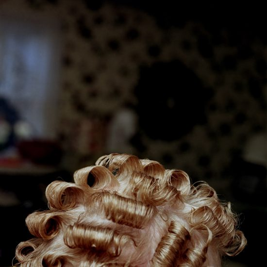 John Arsenault, Bella's Curls