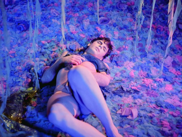 James Bidgood, Field of Blue Flowers (Bruce Kirkman)