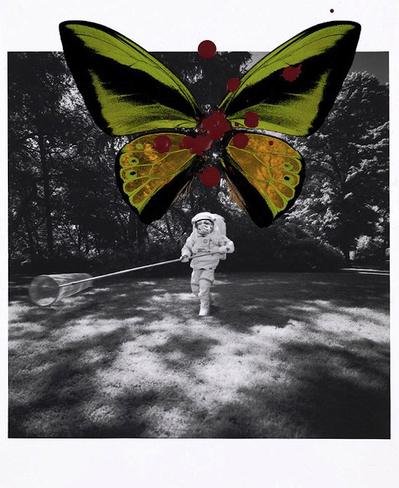 Astronaut with Goliath Butterfly