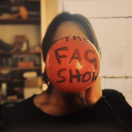 Sarah Lucas, The Fag Show