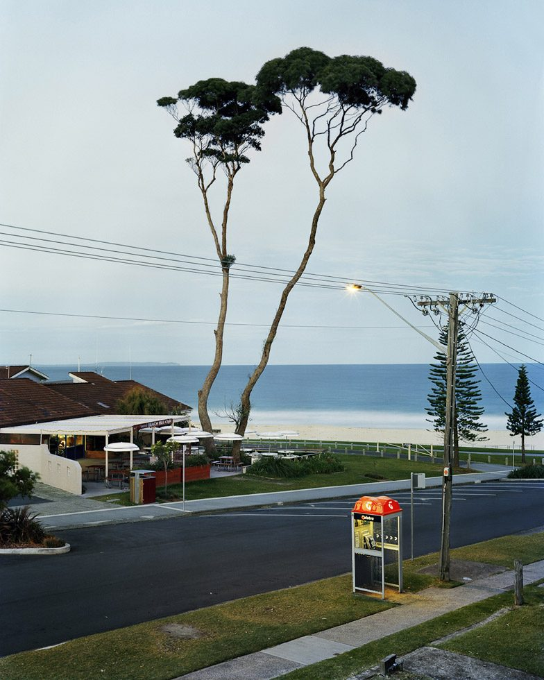 Stein, Two Tall Trees, Mollymook