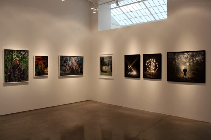 Into the Woods Exhibition Image