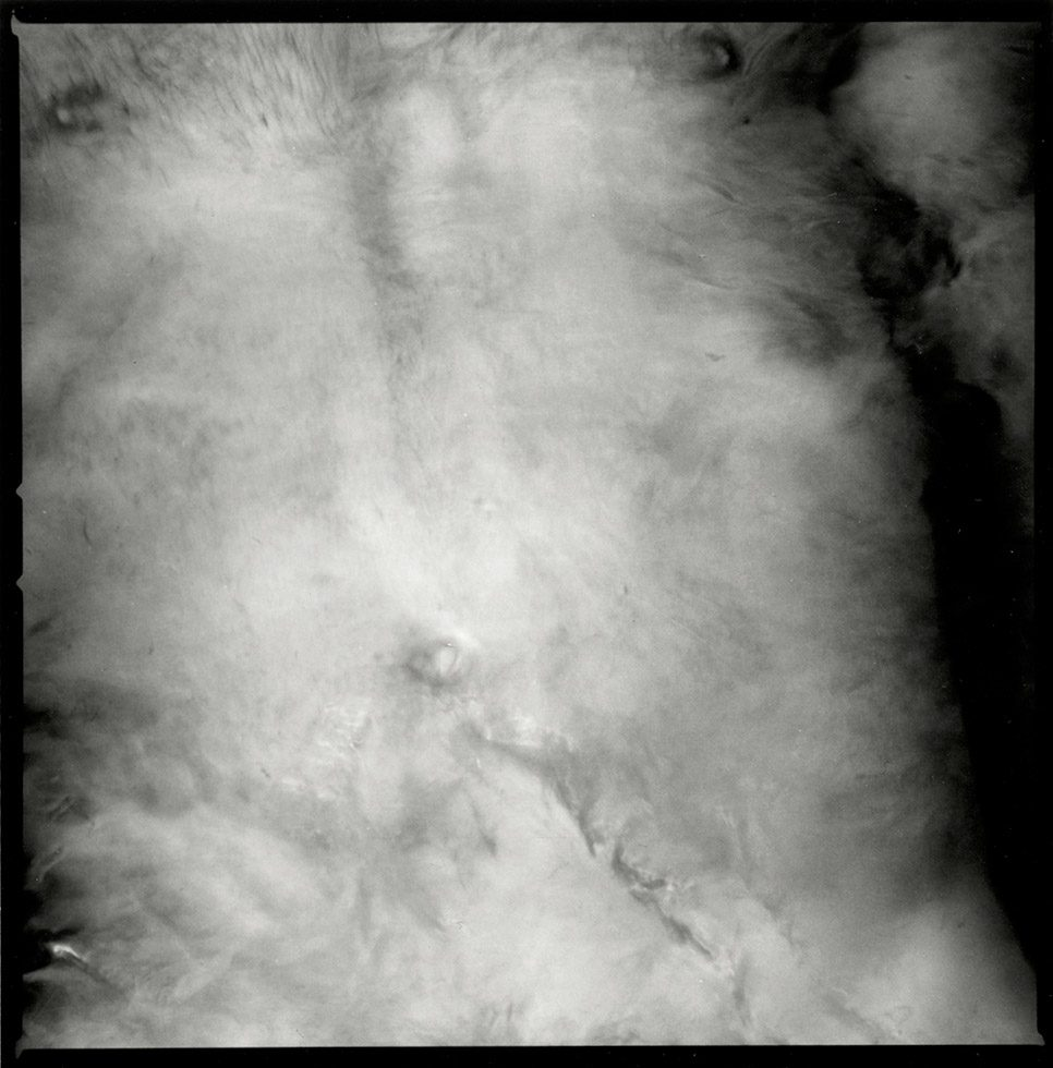 untitled (Belly)