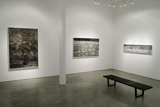 Aziz + Cucher, exhibition image