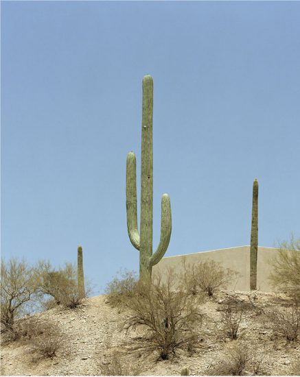 Robert Voit, Saguaro Canyon, Tucson, Arizona