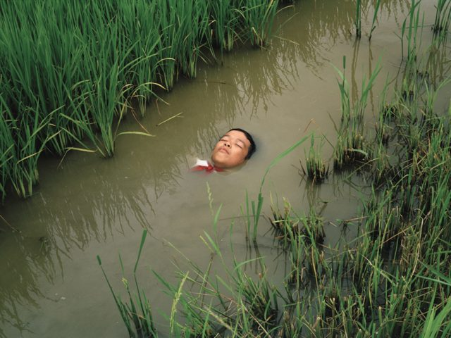 Pipo Nguyen-duy, At Rest