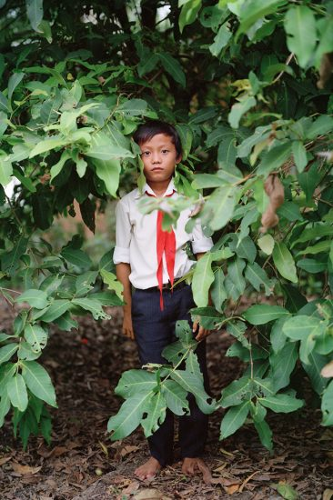 Pipo Nguyen-duy, Boy in Tree