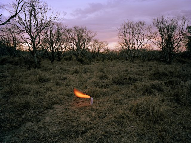 Adam Ekberg, An aerosol container in an abandoned peach orchard