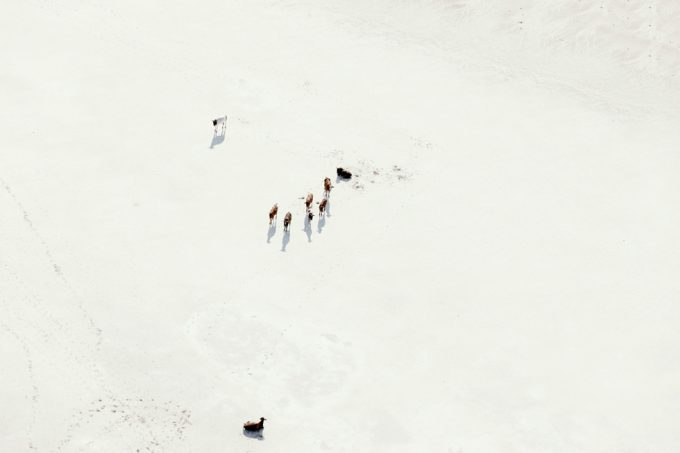 Zack Seckler, Moving West
