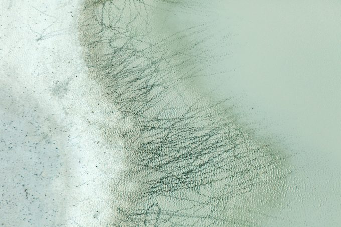 Zack Seckler, Tracks and Water