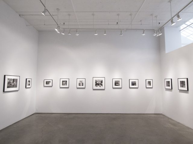 Henry Horenstein, Histories, Installation 2