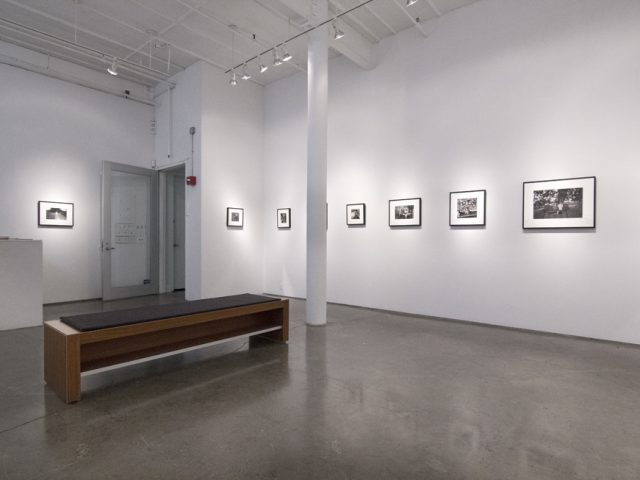Henry Horenstein, Histories, Installation 5