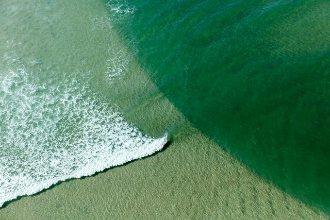 Zack Seckler, Wild Coast Wave