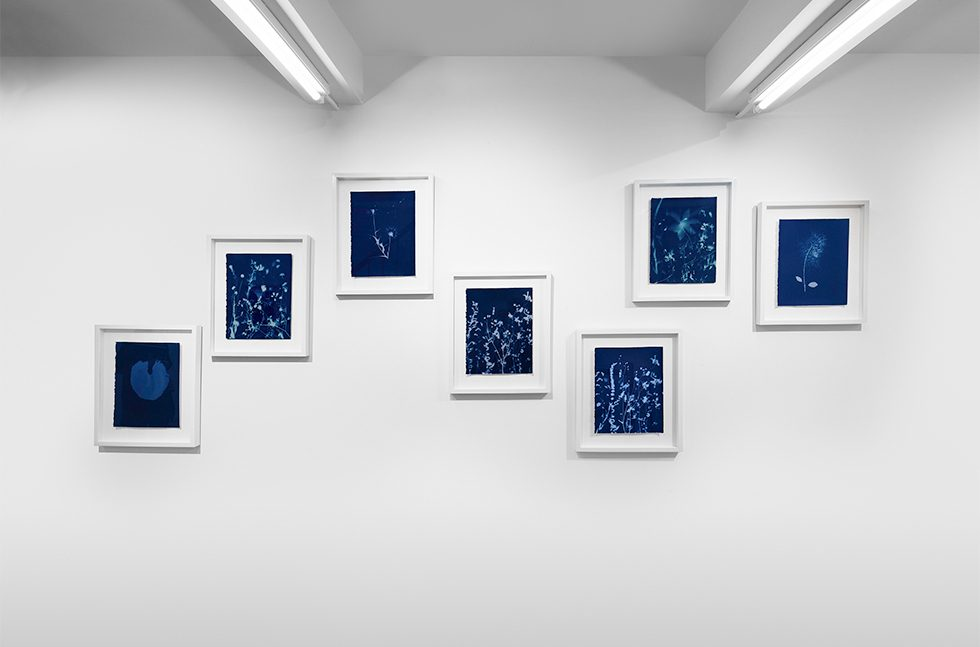 Pipo Nguyen-duy, AnOther-Expedition Installation 4