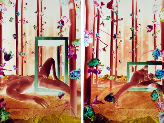 Robert Calafiore, Untitled (Figure Diptych)