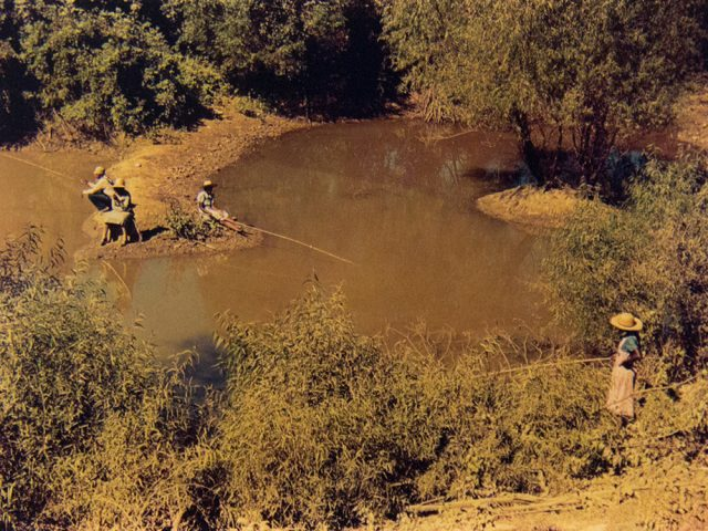 Marion Post Wolcott, Negroes Fishing in Creek Near Cotton Plantations