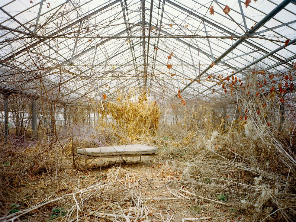Untitled (Autumn Bed, 01.2004)