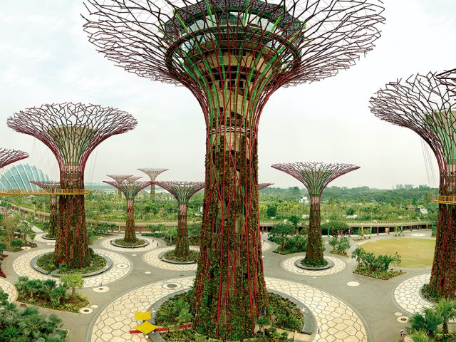 Supertree Grove, Gardens by the Bay, Singapore, 10/2012