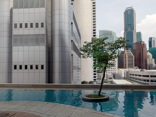 Olaf Otto Becker, Tree on a Rooftop Garden, Singapore, 11/2013
