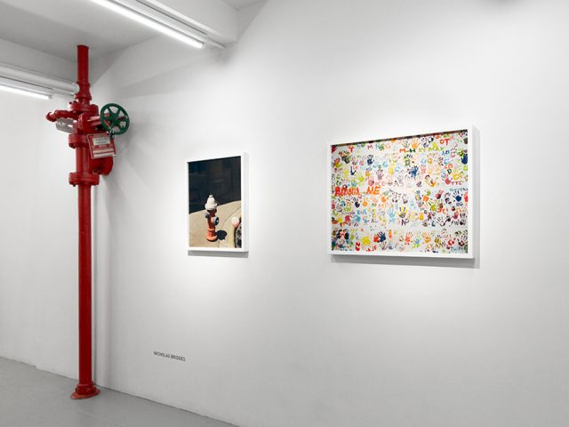 Nicholas Bridges, Installation View