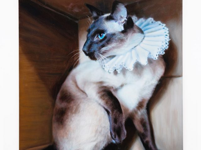 Daniel Handal, Elizabethan Kitty (Chocolate Point)