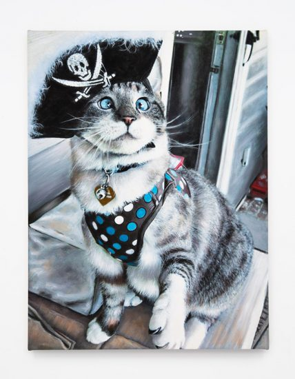 Daniel Handal, Pirate Kitty (Silver Tabby)
