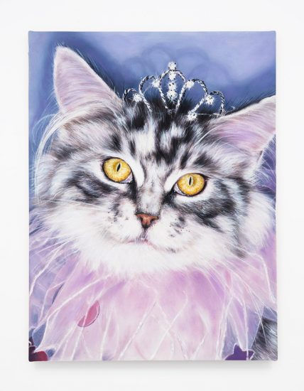 Daniel Handal, Princess Kitty (Blue Tabby)