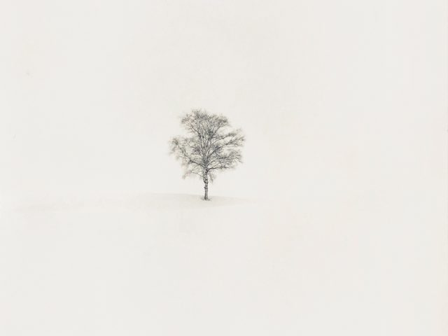 Michael Kenna, Field of Snow