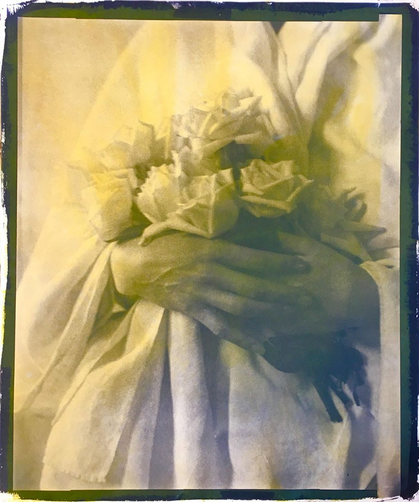 Portrait of Jacqueline Schnabel (Hands with Roses), 1915