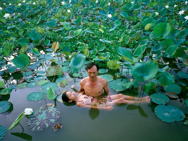 Pipo Nguyen-duy, The Lotus Pond