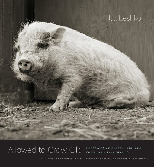 Isa Leshko | Allowed to Grow Old: Portraits of Elderly Animals from Farm Sanctuaries