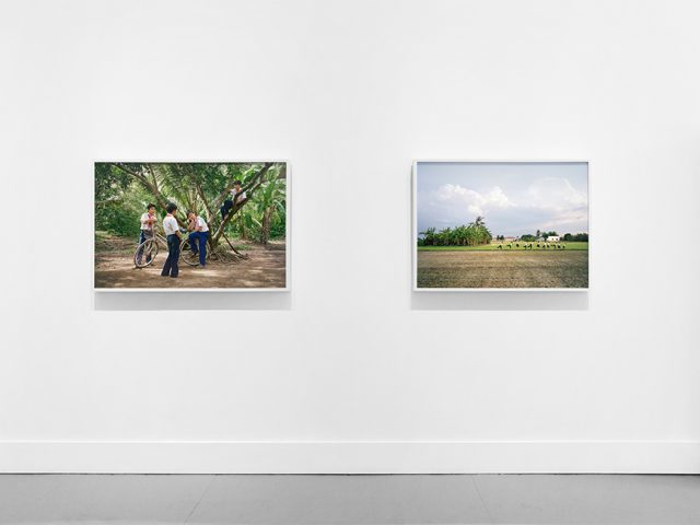 Pipo Nguyen-duy, (My) East of Eden, Installation Image II