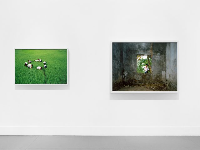 Pipo Nguyen-duy, (My) East of Eden, Installation Image IV
