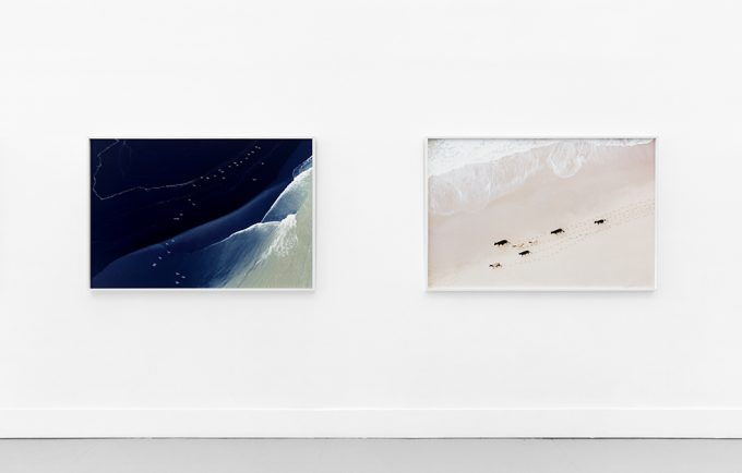 "Zack Seckler, ""Above,"" Installation Image V"