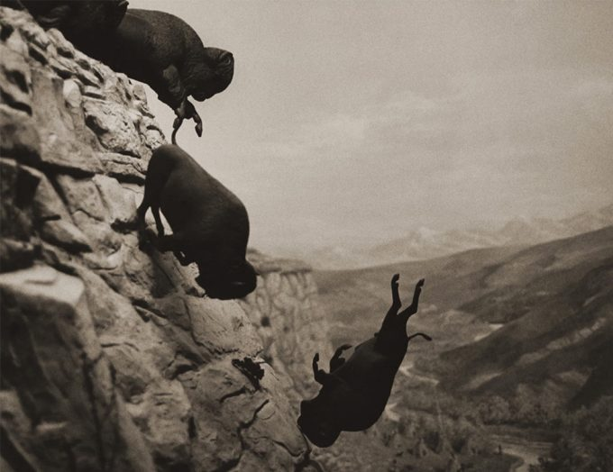 David Wojnarowicz, Untitled (Buffaloes), Aperture edition
