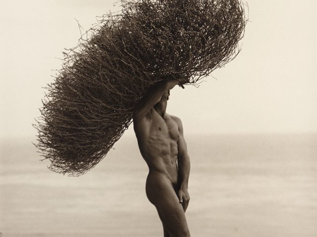 Herb Ritts, Male Nude with Tumbleweed, Paradise Cove