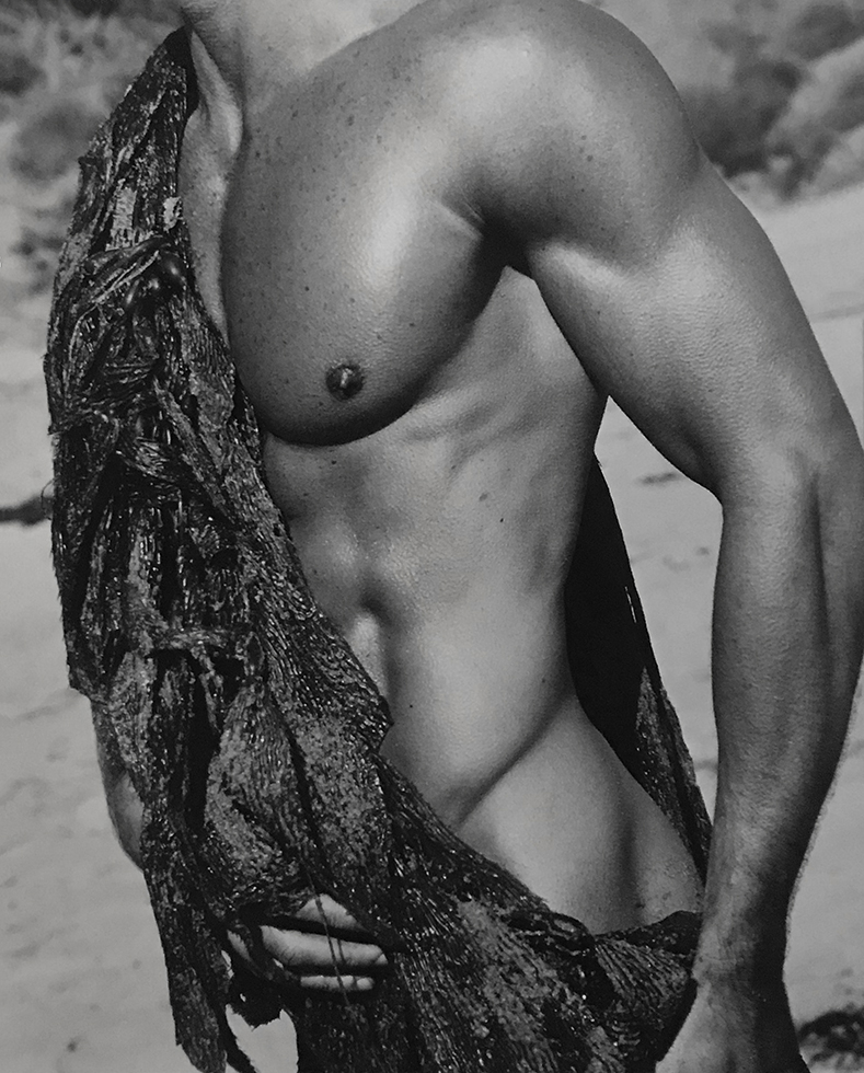 "Christian Thomson, ""Torso with Seaweed"""