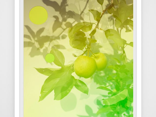 Joseph Desler Costa, Green Apples