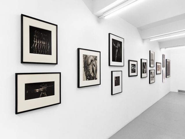 Photographs from the Collection of Steven Gelston, Installation Image III