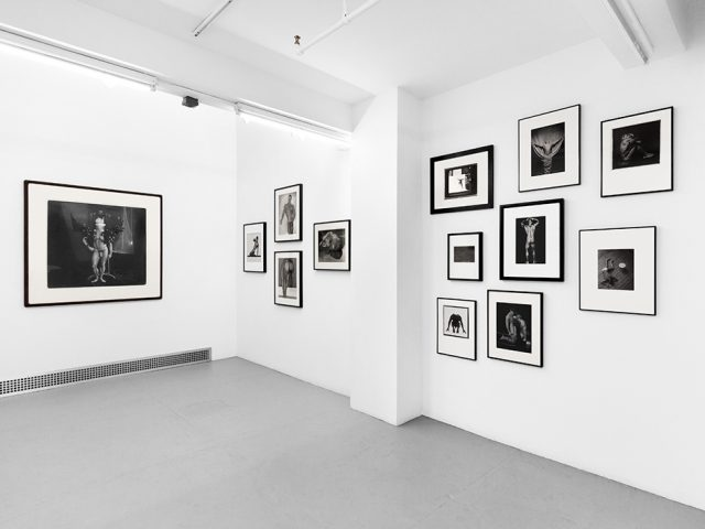 Photographs from the Collection of Steven Gelston, Installation Image IX