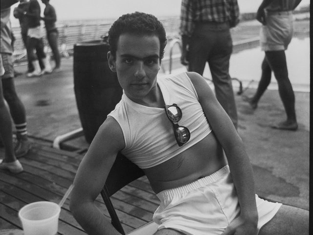 David Armstrong, Max at the Boatslip, Provincetown