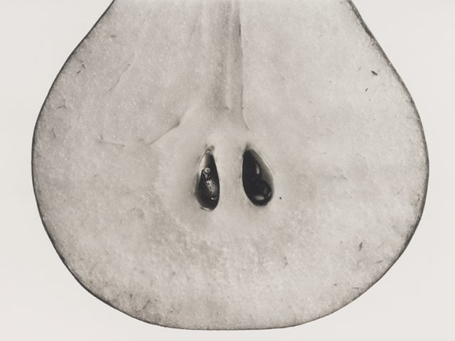 Irving Penn, Pear with Seeds