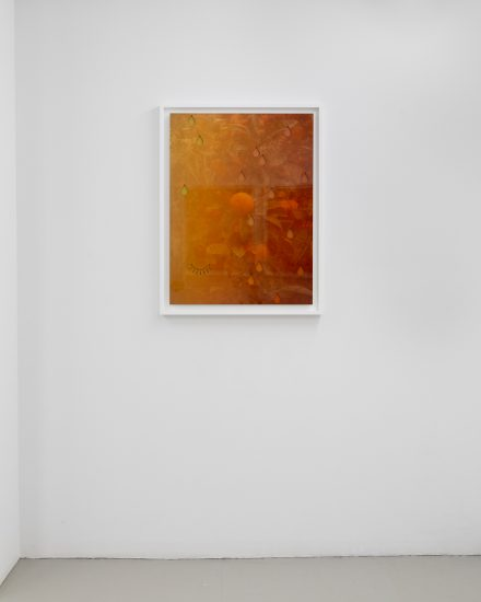 Joseph Desler Costa, Soft Powers, installation image 17