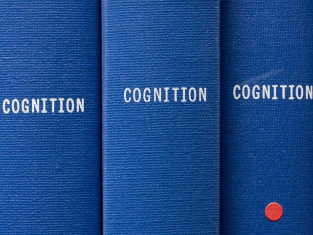 Micky Smith, Cognition