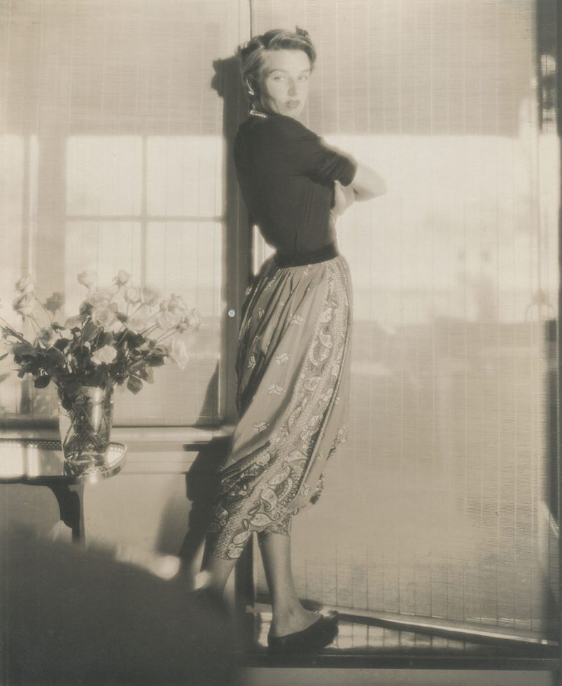 Portrait of a Woman by the Window