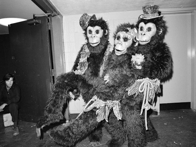 Meryl Meisler, Three Clowns in Monkey Suits at the Ringling Brothers Barnum and Bailey Circus, Sassy 70s