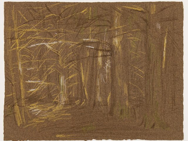 Paul Cadmus, Study of Forest