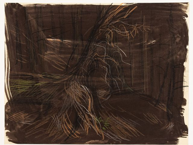 Paul Cadmus, Study of Trees in Forest II