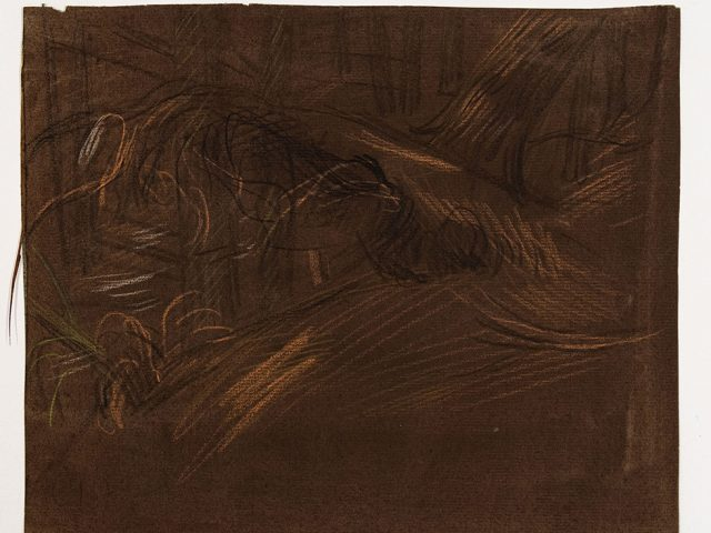 Paul Cadmus, Study of Trees in Forest I